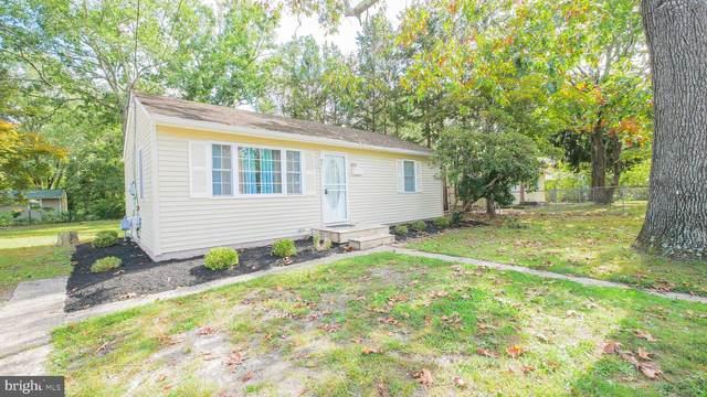 6310 Sears Avenue, MAYS LANDING, NJ 08330 (#NJAC2001222) :: Linda Dale Real Estate Experts