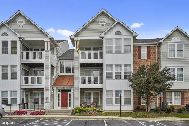 1601 Berry Rose Court 4 3D, FREDERICK, MD 21701 (#MDFR2006500) :: ExecuHome Realty