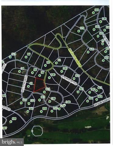 0 Nelson Way, BASYE, VA 22810 (#VASH2001076) :: Pearson Smith Realty