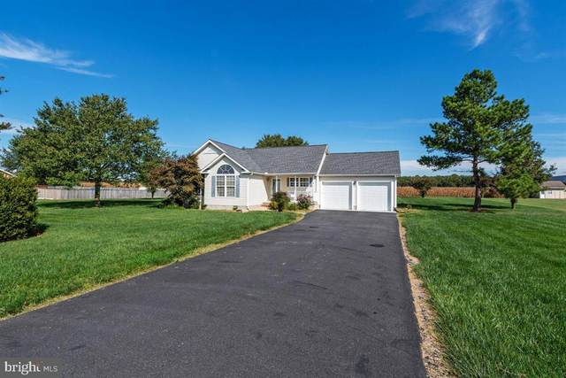 337 Ruthsburg Road, CENTREVILLE, MD 21617 (MLS #MDQA2001186) :: Maryland Shore Living   Benson & Mangold Real Estate