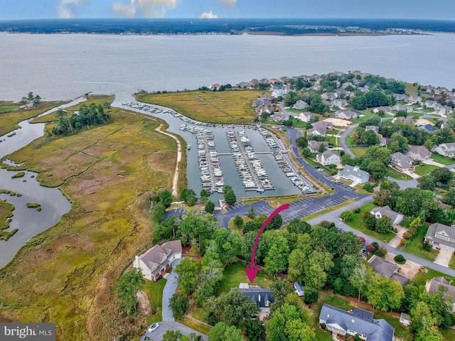 30 Manor Drive, DAGSBORO, DE 19939 (#DESU2007468) :: Linda Dale Real Estate Experts