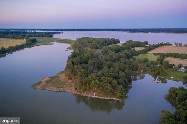 Chancellors Point Road, TRAPPE, MD 21673 (MLS #MDTA2001026) :: Maryland Shore Living | Benson & Mangold Real Estate