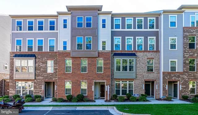 25354 Crested Iris Terrace, ALDIE, VA 20105 (#VALO2009802) :: CENTURY 21 Core Partners