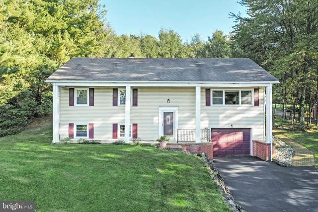 3835 Mount Pisgah Road, YORK, PA 17406 (#PAYK2007560) :: TeamPete Realty Services, Inc