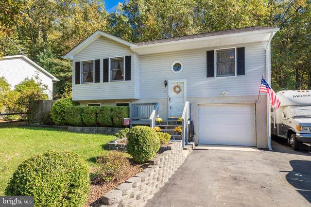 12 Natalie Way, FREDERICKSBURG, VA 22405 (#VAST2004458) :: Great Falls Great Homes
