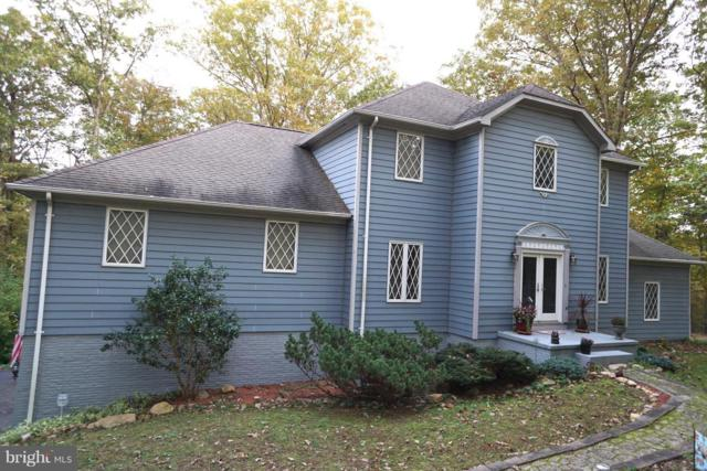 3970 Panhandle Road, FRONT ROYAL, VA 22630 (#1000075283) :: The Maryland Group of Long & Foster