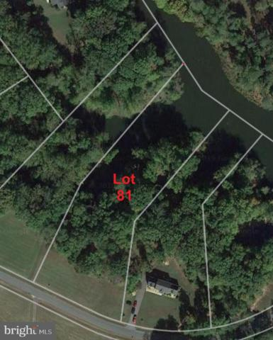 Lot 81 - Portobago Trail, PORT ROYAL, VA 22535 (#1000142847) :: RE/MAX Cornerstone Realty