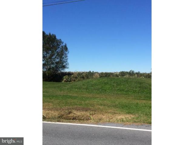 2891 Kitts Hummock Road, DOVER, DE 19901 (#1000365061) :: REMAX Horizons