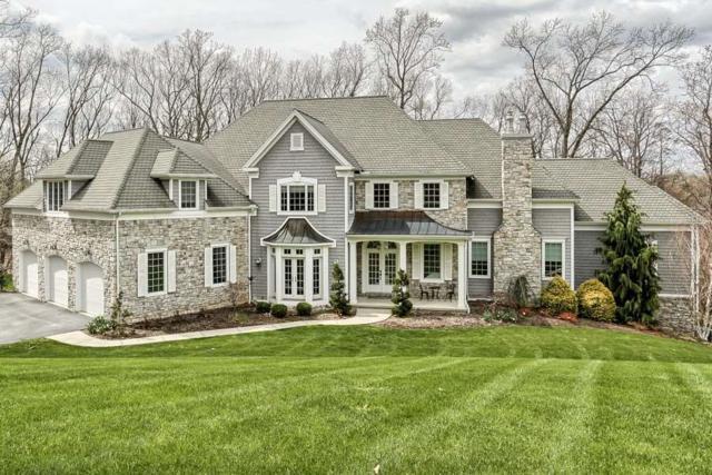 1051 Woodridge Drive, HUMMELSTOWN, PA 17036 (#1000780651) :: The Joy Daniels Real Estate Group