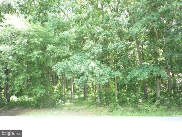 Lot 5 Big Ditch Road, WYOMING, DE 19934 (#1001216285) :: RE/MAX Coast and Country