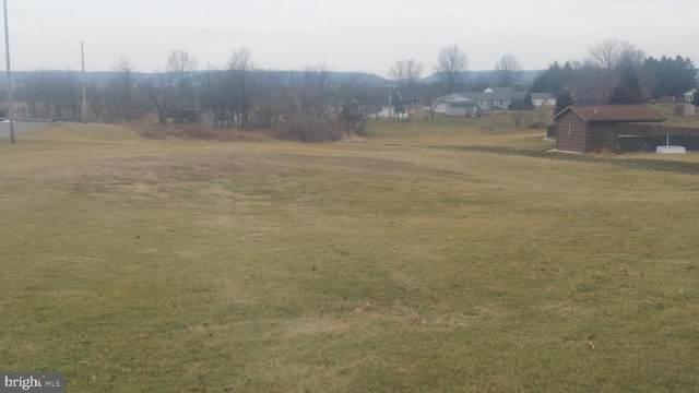4905 State Route 209, ELIZABETHVILLE, PA 17023 (#1002661805) :: The Joy Daniels Real Estate Group