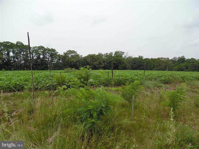Lot 3 Stouchsburg Road, MOUNT AETNA, PA 19544 (#1002663131) :: Iron Valley Real Estate