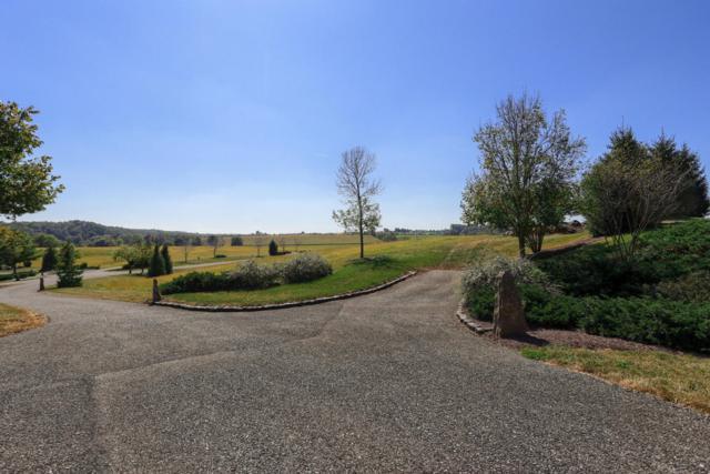 45 Jamesfield Place #1, MANHEIM, PA 17545 (#1002663329) :: Liz Hamberger Real Estate Team of KW Keystone Realty