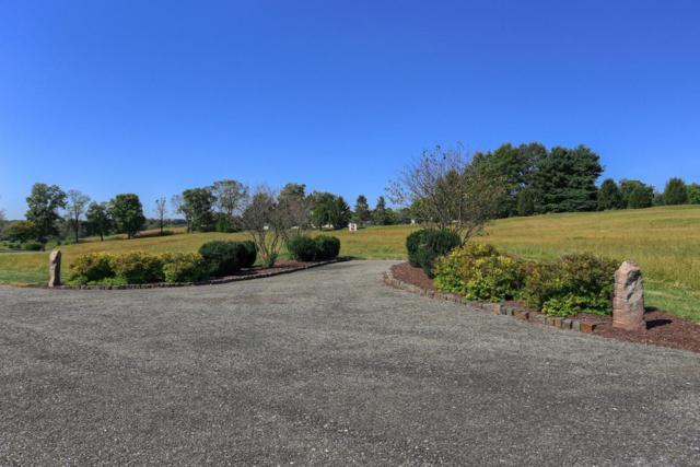 101 Jamesfield Place #2, MANHEIM, PA 17545 (#1002663343) :: Liz Hamberger Real Estate Team of KW Keystone Realty