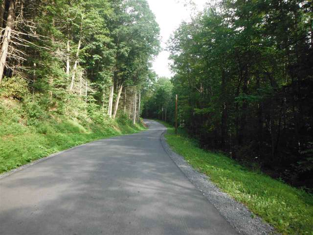 German Rd. & Little Plum Run Rd, LOCK HAVEN, PA 17745 (#1002670011) :: Bob Lucido Team of Keller Williams Integrity