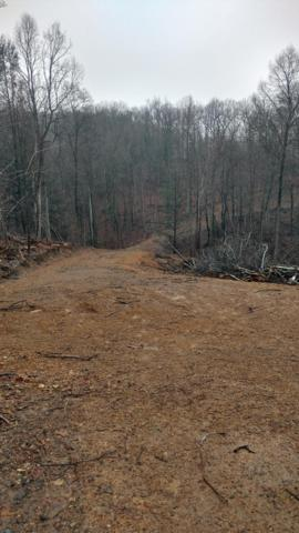 Lot 7 Stoner Drive, SHERMANS DALE, PA 17090 (#1002671155) :: The Heather Neidlinger Team With Berkshire Hathaway HomeServices Homesale Realty