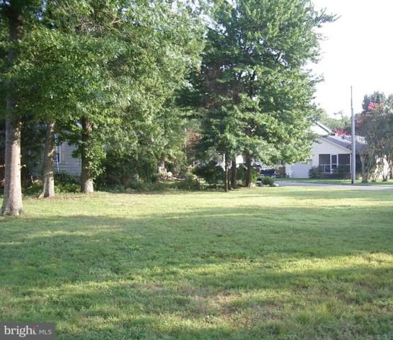 Lot 1 Canal Rd., REHOBOTH BEACH, DE 19971 (#1005957939) :: RE/MAX Coast and Country