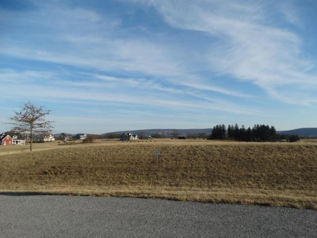 Lot 26 Peyton Drive, CARLISLE, PA 17015 (#1000184218) :: The Heather Neidlinger Team With Berkshire Hathaway HomeServices Homesale Realty