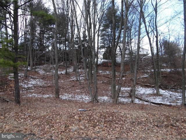 Lot 11 Louisa Avenue, POTTSVILLE, PA 17901 (#1000247760) :: Mortensen Team