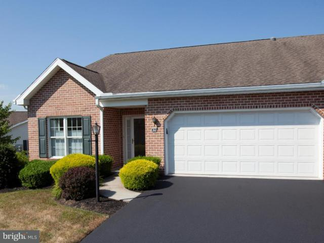 64 Creek Bank Drive, MECHANICSBURG, PA 17050 (#1000361188) :: The Heather Neidlinger Team With Berkshire Hathaway HomeServices Homesale Realty