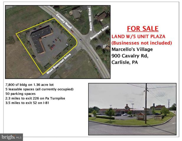 900 Cavalry Road, CARLISLE, PA 17013 (#1000414692) :: The Joy Daniels Real Estate Group