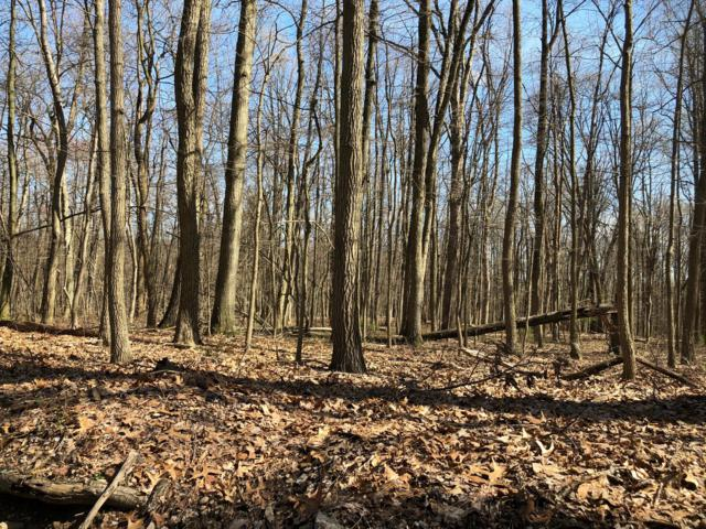 485 Old Mine Road Lot 1, LEBANON, PA 17042 (#1000472292) :: The Dailey Group