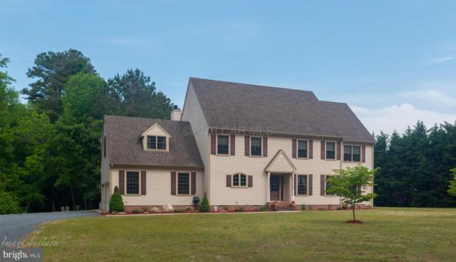 310 N Camden Avenue, FRUITLAND, MD 21826 (#1001563444) :: Condominium Realty, LTD