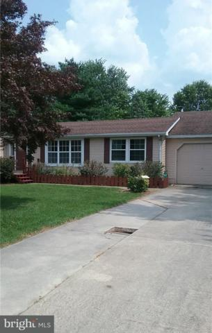 34336 Beech Drive, LEWES, DE 19958 (#1001567074) :: The Windrow Group