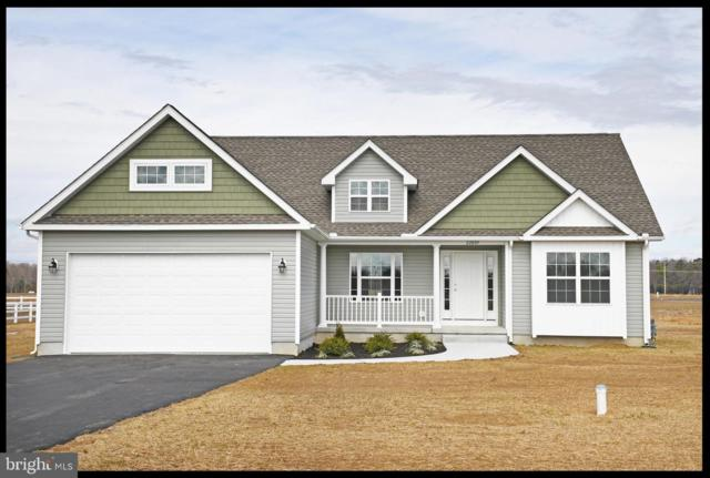 22719 Church Creek Drive, LINCOLN, DE 19960 (#1001569176) :: RE/MAX Coast and Country