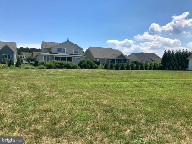 221 University Drive, LEWES, DE 19958 (#1001570326) :: Remax Preferred | Scott Kompa Group