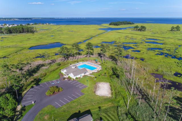 31760 Marsh Island Avenue #10, LEWES, DE 19958 (#1001570630) :: RE/MAX Coast and Country