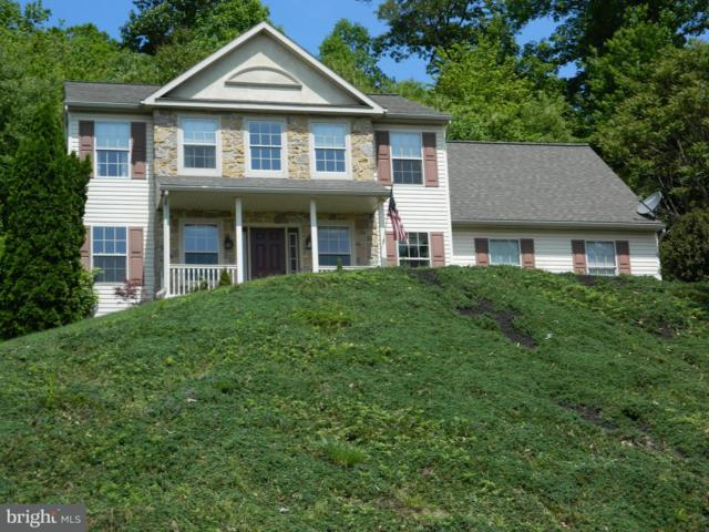 5483 Deer Path Lane, GAP, PA 17527 (#1001650956) :: Benchmark Real Estate Team of KW Keystone Realty