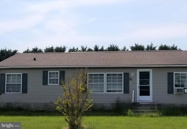 16 E Greenwing Drive, MILTON, DE 19968 (#1001767912) :: Atlantic Shores Realty
