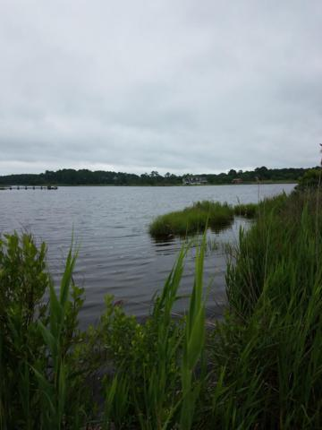 Point Road Lot 10 A, PRINCESS ANNE, MD 21853 (#1001907088) :: Atlantic Shores Sotheby's International Realty