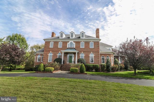 17214 Winning Colors Place, LEESBURG, VA 20176 (#1001913880) :: The Gus Anthony Team