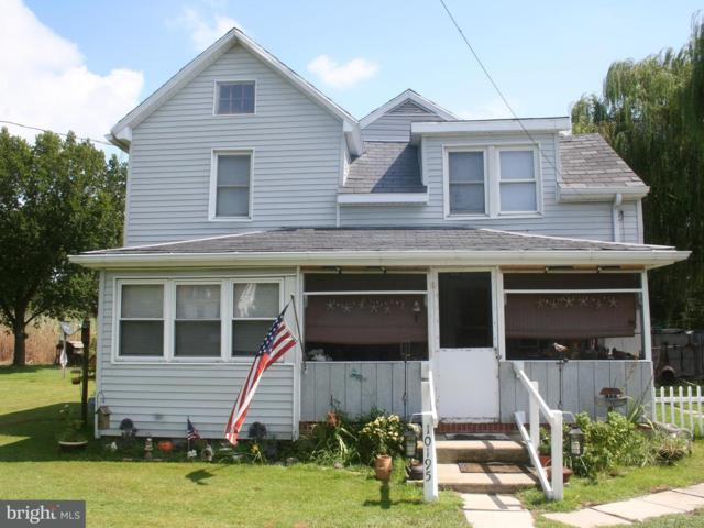 10195 Deal Island Road, DEAL ISLAND, MD 21821 (#1001930406) :: RE/MAX Coast and Country