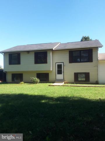 14135 Sowers Lane, CULPEPER, VA 22701 (#1001960276) :: Remax Preferred | Scott Kompa Group