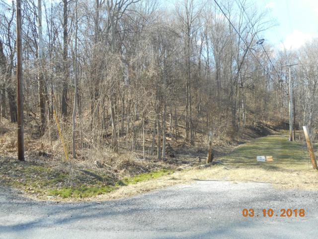 1 Roadside Trail, FAIRFIELD, PA 17320 (#1001962608) :: Iron Valley Real Estate