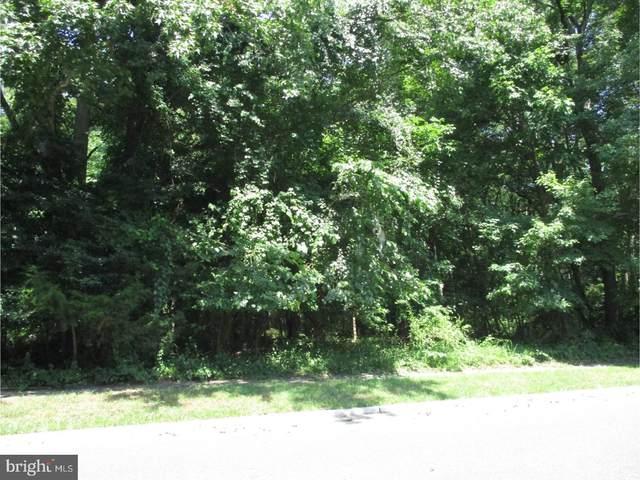 708 Pinelawn Avenue, LINDENWOLD BORO, NJ 08021 (#1001975698) :: Linda Dale Real Estate Experts