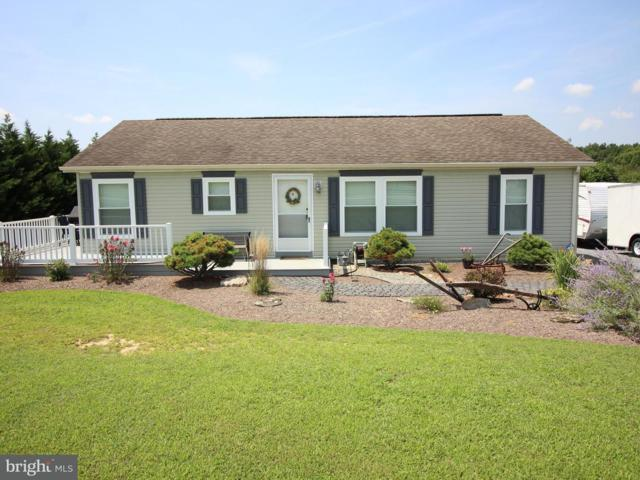 135 Blackberry Circle, MARYDEL, DE 19964 (#1001996344) :: The Windrow Group