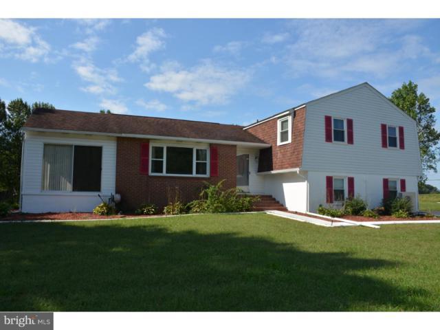 1266 Sophers Row, MAGNOLIA, DE 19962 (#1002032358) :: Compass Resort Real Estate