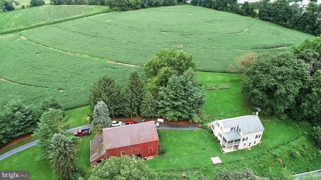 531 White Oak Road, MANHEIM, PA 17545 (#1002082438) :: The Joy Daniels Real Estate Group
