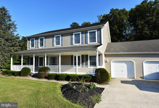 164 Teal Drive, MILLSBORO, DE 19966 (#1002095980) :: The Rhonda Frick Team