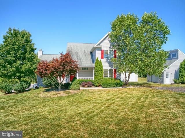 144 Sherby Lane, SHERMANS DALE, PA 17090 (#1002108512) :: Colgan Real Estate
