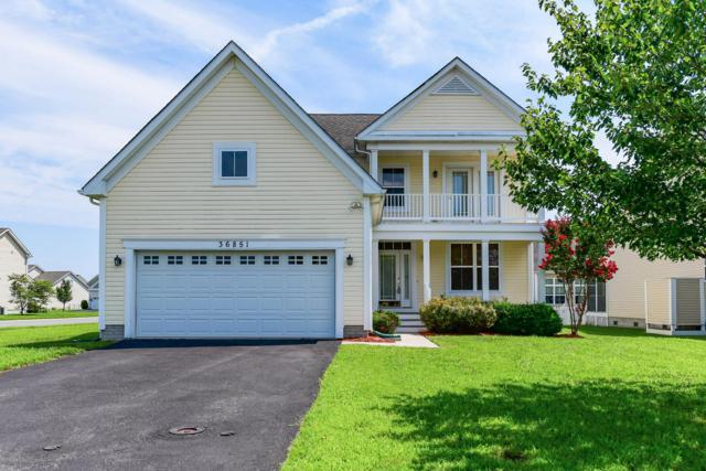 36851 Herring Court, SELBYVILLE, DE 19975 (#1002163412) :: Linda Dale Real Estate Experts