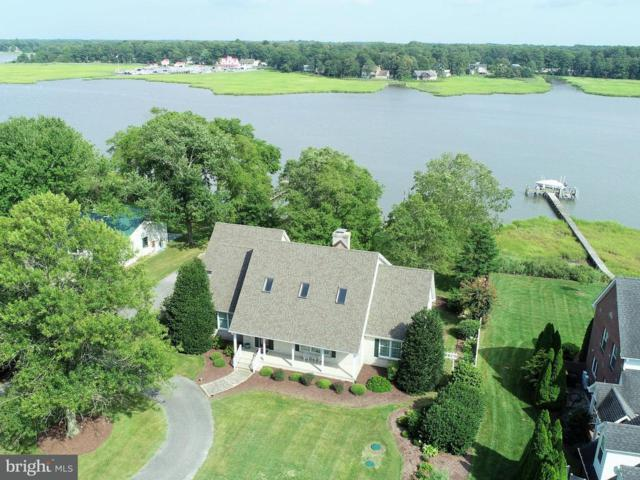 157 Riverview Drive, DAGSBORO, DE 19939 (#1002219674) :: The Windrow Group
