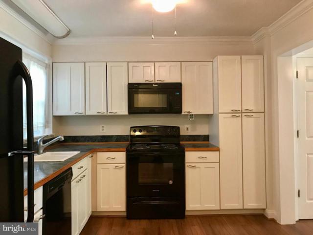14421 Cool Oak Lane #14421, CENTREVILLE, VA 20121 (#1002227354) :: The Greg Wells Team