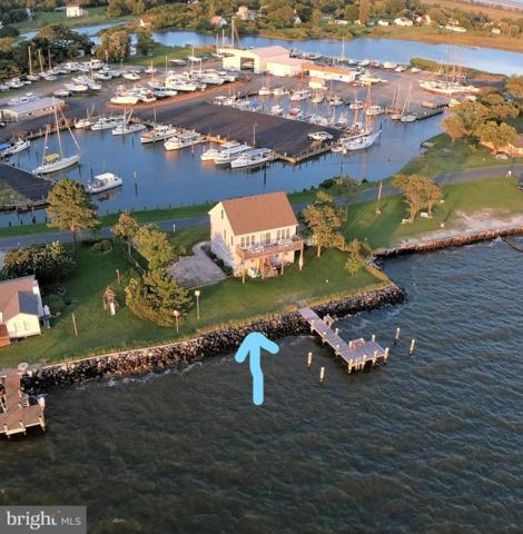 10546 Cassandra Drive, DEAL ISLAND, MD 21821 (#1002229520) :: ExecuHome Realty