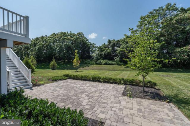 25011 Dahlia Manor Place, ALDIE, VA 20105 (#1002302668) :: Remax Preferred | Scott Kompa Group