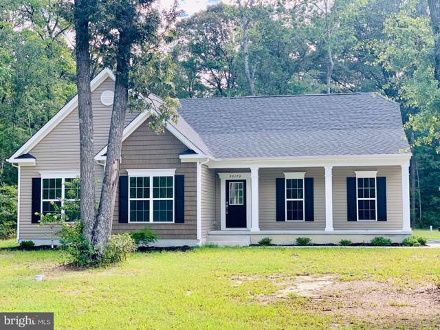 25173 Harmony Woods Drive, MILLSBORO, DE 19966 (#1002484450) :: Linda Dale Real Estate Experts